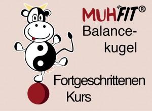 MUHFIT Web Icons7